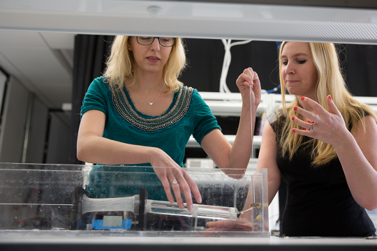 Professor and student conducting experiment in fluid mechanics in lab