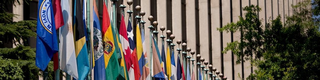 Row of flags along street in Washington, DC